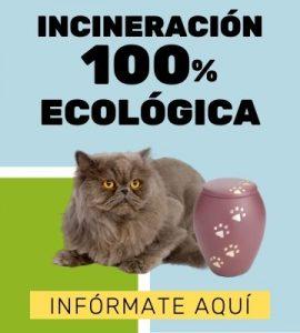 Incineración 100% ecológica